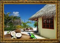 ПЕйзаж с кокосами