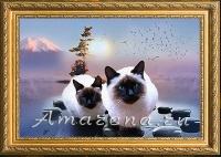 Коты Сиама