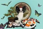 Натюрморт с суши
